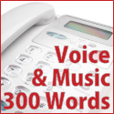 Voice + Music - 300 words